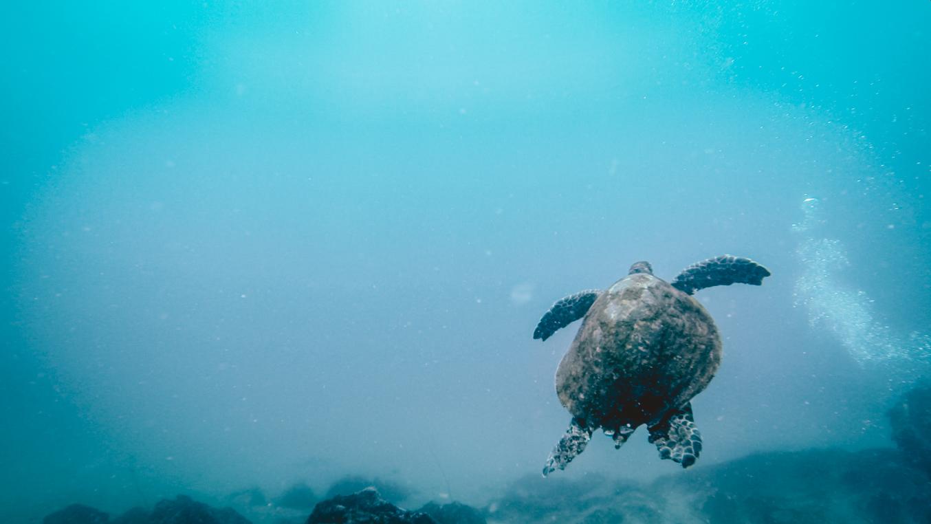 Seychellen_07