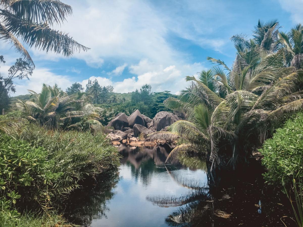 Seychellen_7464