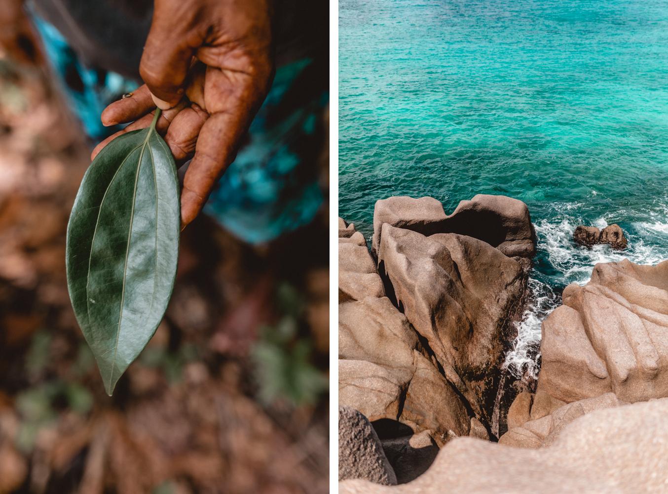 Seychellen_7454