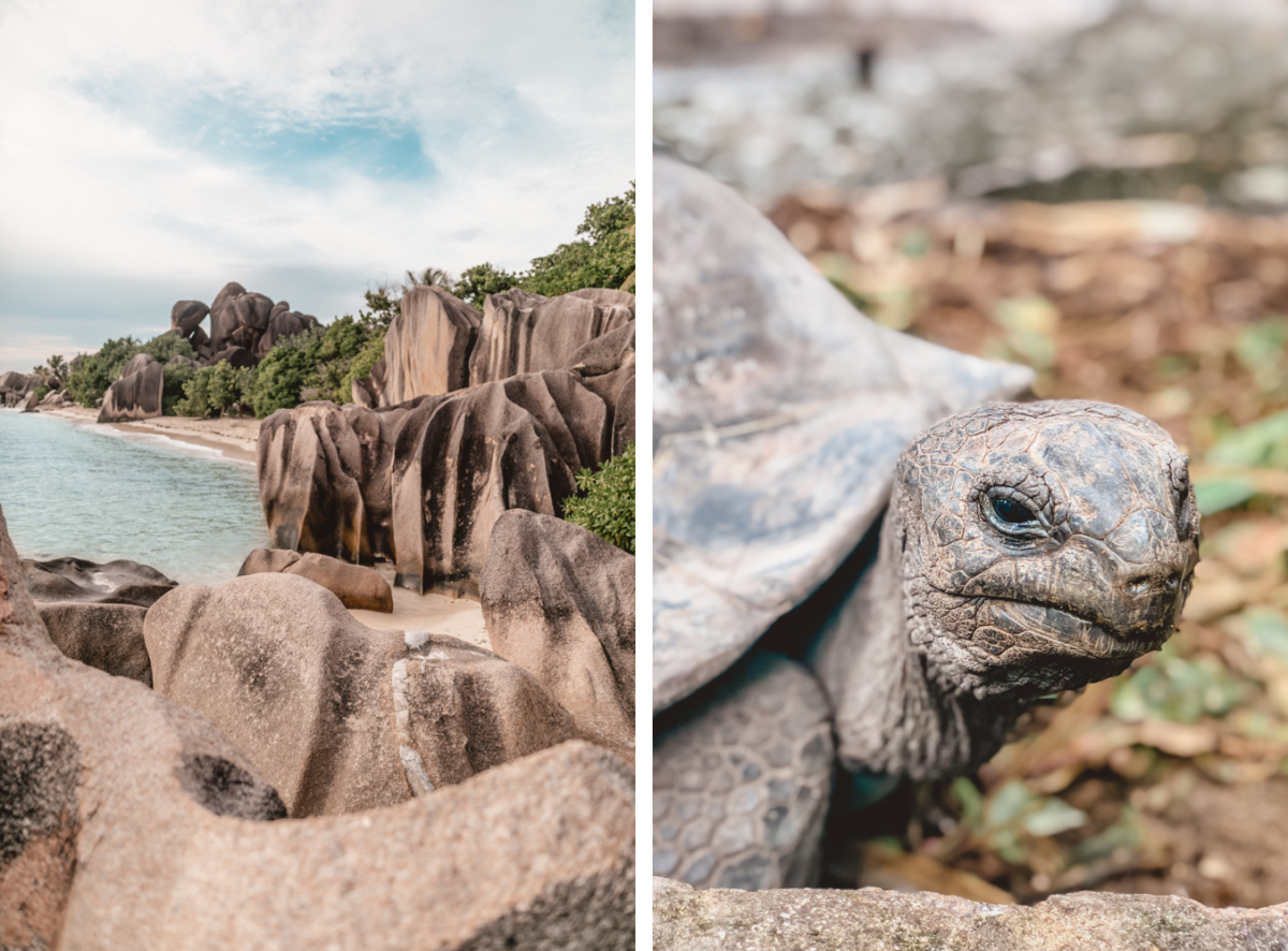 Seychellen_4499